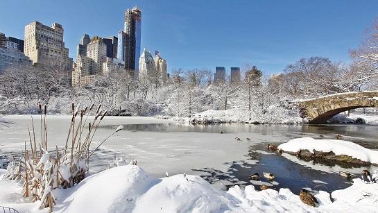 nyc winter.jpg